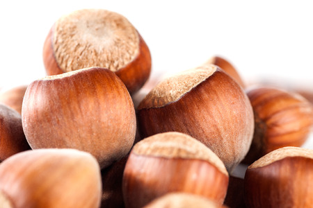 Macro of Hazelnuts Filberts iSolated on White Background.  Stock Photo