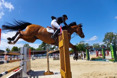 caballo saltando: El internacional ecuestre show-salto - CSIO en Sopot, Polonia. Foto tomada: el 12 de junio de 2010
