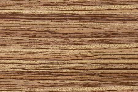 High quality African Zebrano texture. photo