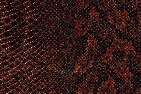 snakeskin: High quality snake skin pattern.