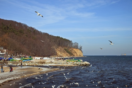 View of the cliff in Orlowo, Poland. photo