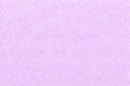 Violet paper texture with hairs. Stock Photo - 11879152
