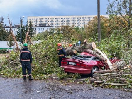 Árboles rotos y coches destruidos después de que el huracán de Gdansk, Polonia Foto de archivo