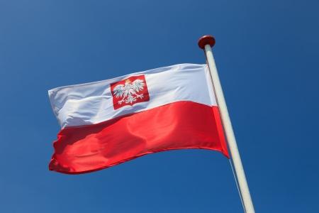 bandera de polonia: Polonia bandera nacional en el cielo Foto de archivo