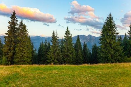 Zomeravond Tatra gebergte, Polen