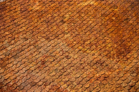 damaged roof: Old rusty tiles roof in spots  Stock Photo