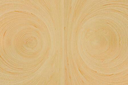 Wood rings texture - wooden background  photo