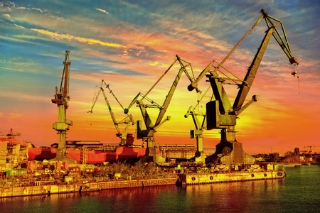 Big industrial cranes on a sunset sky background. photo