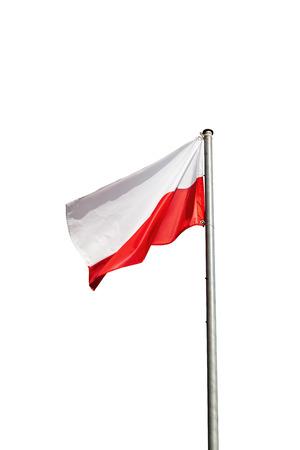 bandera de polonia: Bandera de Polonia en el viento aislado en el fondo blanco. Foto de archivo