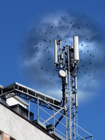 adverso: Los efectos adversos de la radiaci�n de radiofrecuencia en las aves. - Conceptual.