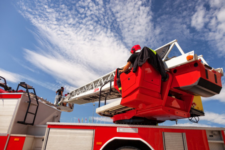 maintains: Checks and maintains the ladders on the fire truck.