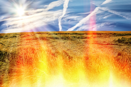 no fires: Hot weather and no rain makes drought and fires. Stock Photo