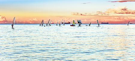 sailboard: Windsurfing session on the sea at sunset.