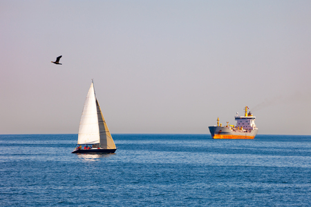 encounters: Close encounters between sailboat and commercial ships.