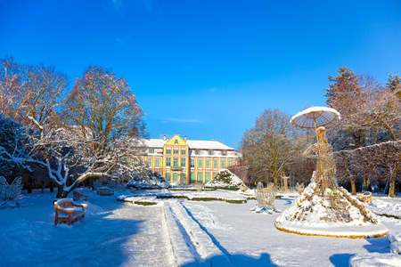 Snow covered city park in a winter day. Oliwa, Poland. Reklamní fotografie