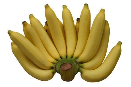 banana (Kluai Hom thong),high vitamin B andpotassium  photo