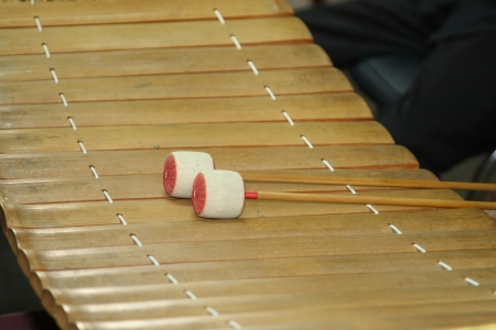 thai classical instrumental - thai bamboo xylophone Ranad