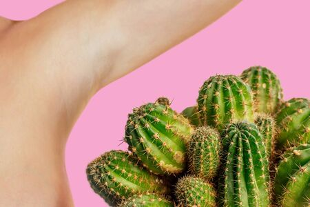 green cactus near the armpits. the concept of depilation, hair removal and removal unwanted hair on the body Zdjęcie Seryjne