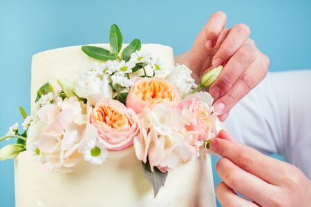 confectioner pastry-cook woman s hand decorate appetizing creamy white two-tiered wedding cake with fresh flowers in studio on a blue background Stockfoto