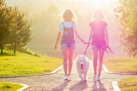 two beautiful and charming blonde twins woman in denim overalls are walking with a white fluffy samoyed dog in the park. Stok Fotoğraf - 132614800