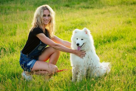 beautiful curly blonde smiling happy young woman in denim shorts training a white fluffy cute samoyed dog in the summer park sunset rays field background . pet and hostess