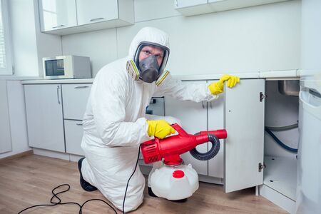 white worker spraying pesticide on induction hob Banque d'images - 133688789