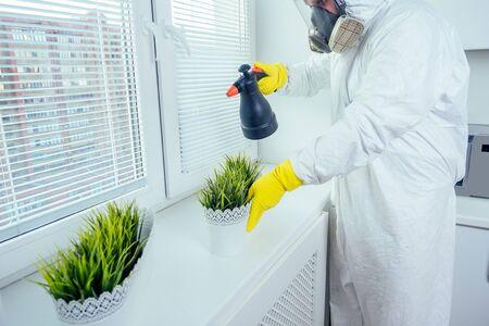 pest control worker in uniform spraying pesticides under cabinet in kitchen flower on window Imagens