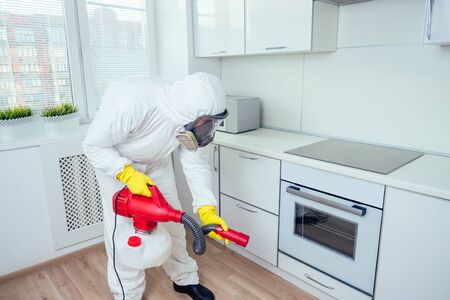Worker spraying pesticide on induction hob.