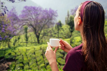 tea cup in female hands backgrounds of mountains with green plant morning in India Kerala Munnar Zdjęcie Seryjne