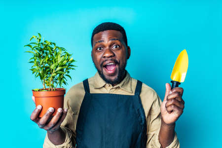 african american man in black apron is ready to spring season in blue studio background