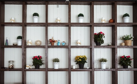 Plants on shelves against a white wall