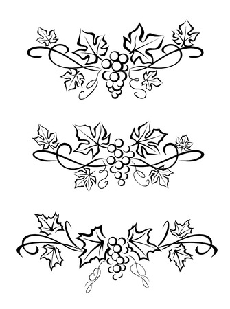 Grape branchs and leaves for decoration and ornate