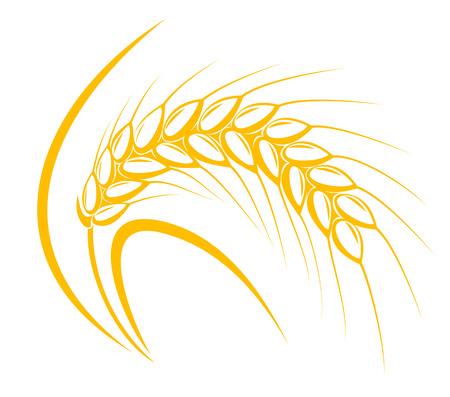 Orecchio di cereali per l'agricoltura o la raccolta concetto di design Vettoriali