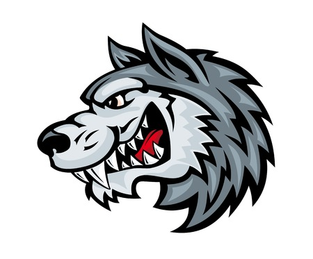 Cartoon angry wolf head isolated on white background. Vector illustration