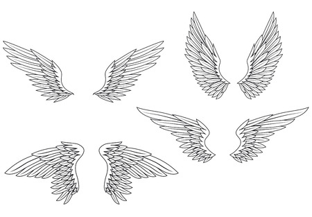 wing: Set of heraldic wings for design and ornate