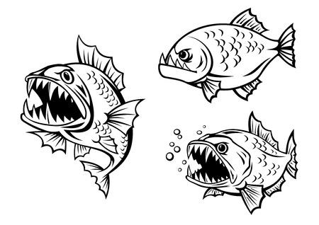 peligro: Delineados peces pirañas peligrosos enojados con la boca abierta, dientes afilados y aletas adecuadas para la mascota o el diseño de la fauna submarina