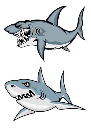 漫画のスタイルのマスコットやタトゥーのデザインのホワイト バック グラウンドの分離を攻撃する準備ができて歯をむき出しで危険な白いサメ  イラスト・ベクター素材
