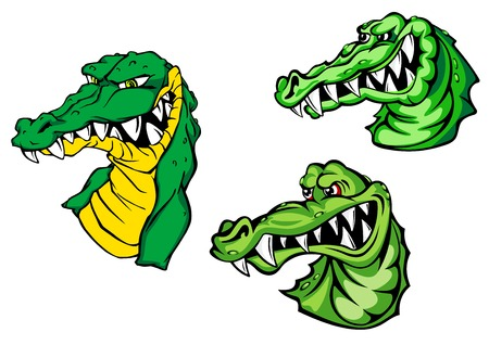 bared teeth: Dangerous crocodiles or alligators cartoon characters depicting heads of green reptiles with aggressive bared teeth isolated on white background for mascot or childish decor design Illustration