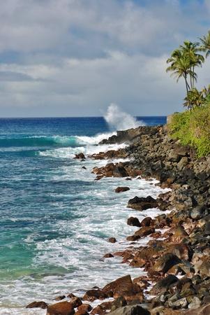 ワイメア湾、ハワイ ・ オアフ島の太陽の下で別の完璧な一日 写真素材