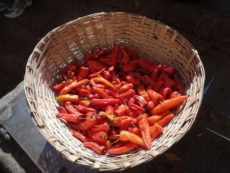 Dried Chilli photo
