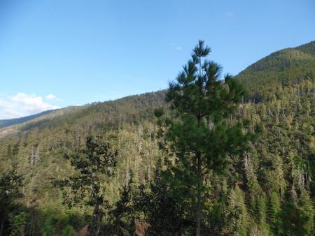 Mountains of Bhutan photo