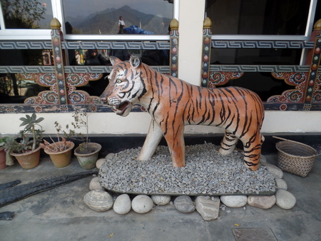 yawn: Tiger Yawn