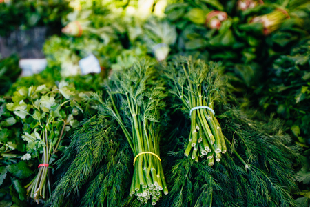 Food background - bunches of fresh cut green