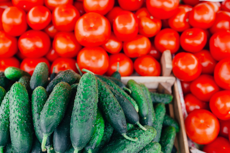 cucumis sativus: Pile of tomatoes and cucumber on the market.