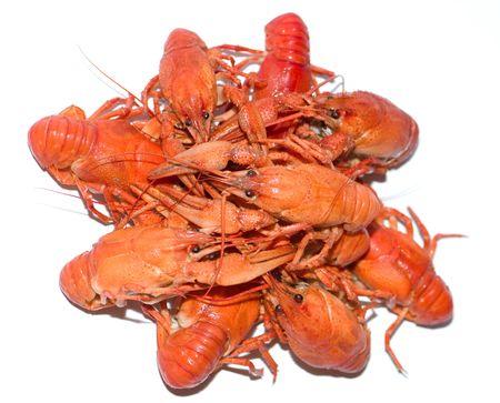 Hot boiled crayfish on white background Stock Photo