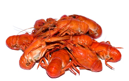 Pile of boiled crayfishes isolated on the white background Stock Photo