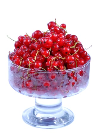 Red currant dessert in glass, isolated on white background