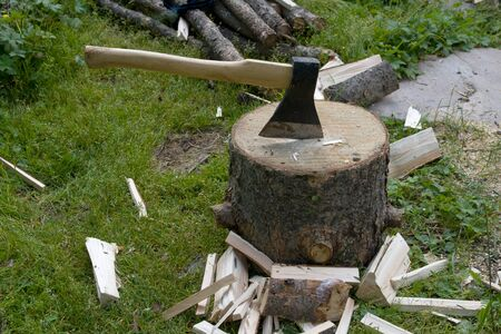 Axe and wooden tree logs ready for chopping Stock Photo - 17224363