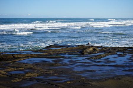 tasman: Tasman sea Stock Photo