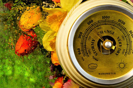Barometer, rainy weather, water drops on the glass on the background of garden flowers. Barometer instrument for measuring atmospheric pressure, it can be used to predict the weather. Archivio Fotografico